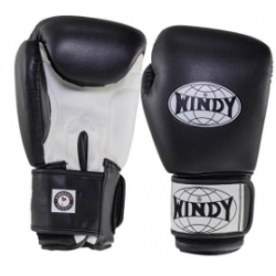 Boxing gloves kids WINDY