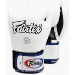 Fairtex gloves BGV1